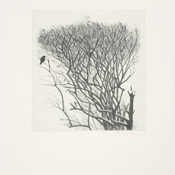 "Etching, ""Bird in the Bush"", [between 1965 and 1975]. Rita Briansky. Jewish Public Library Archives, 1291_00113."
